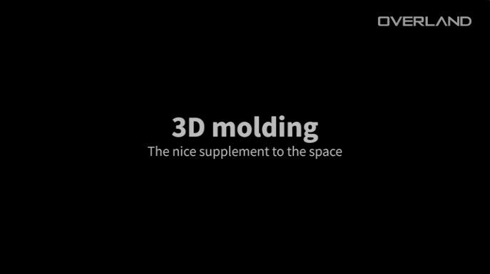 3D Molding