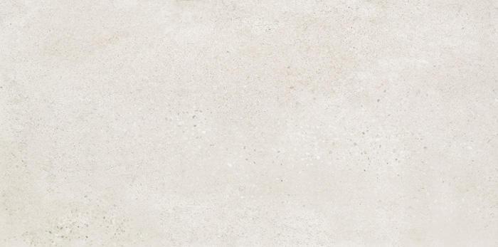 FIJI  LGISM9101