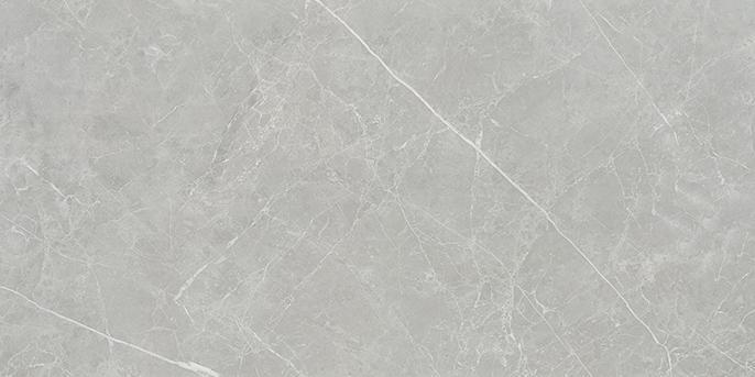 Grey 20 SGIVP9952