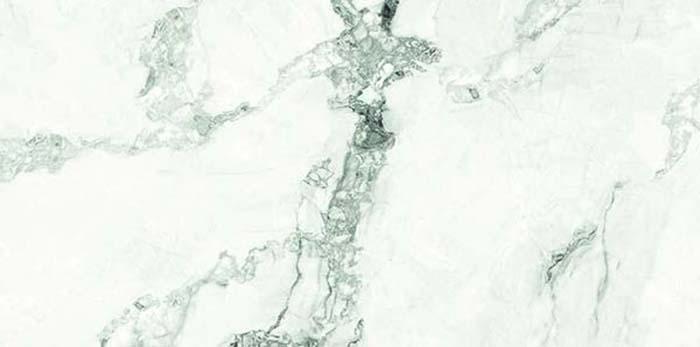 Swan Lake QI1226P370F1